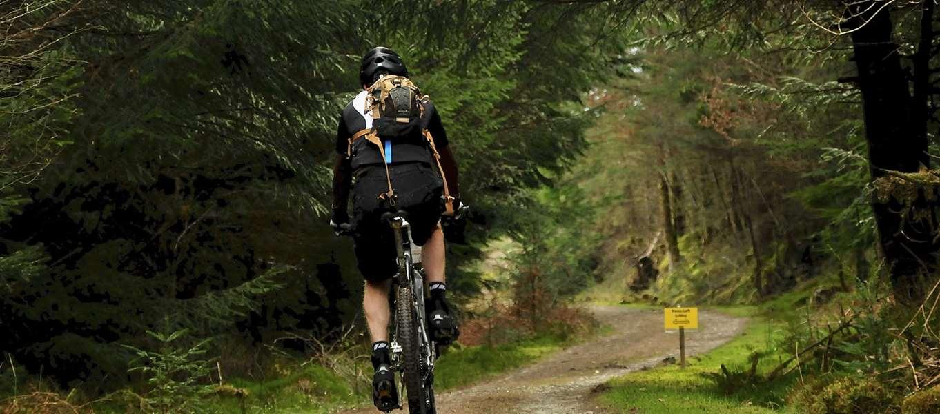 Campsites near Coed y Brenin Forest Park, Dolgellau, Snowdonia