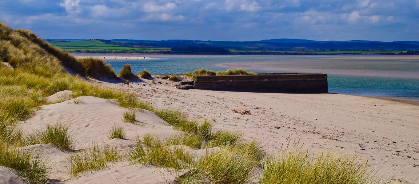 Campsites near Budle Bay