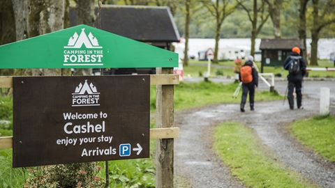 Cashel - Loch Lomond Camping in the Forest Site - The