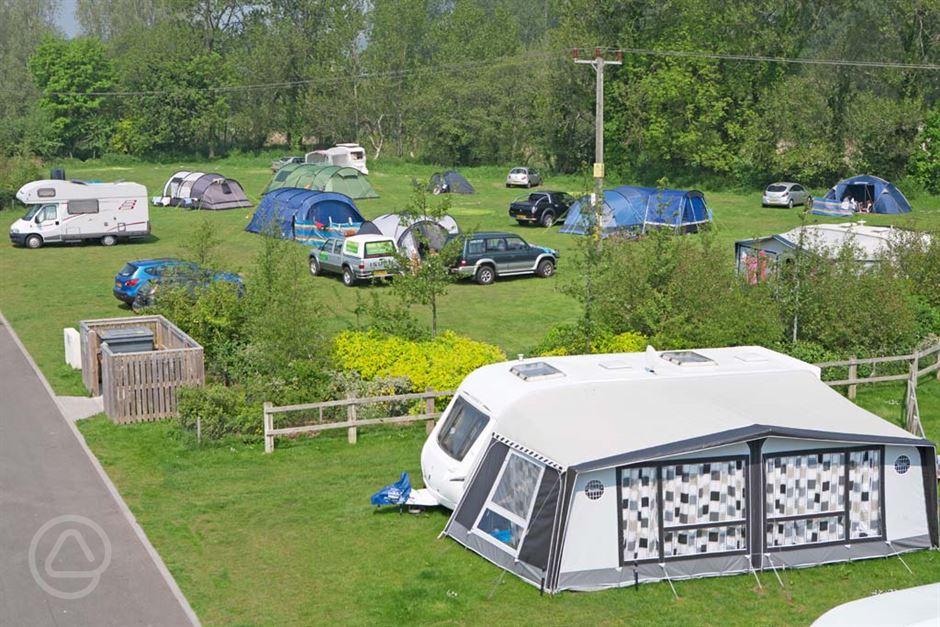 Dog Friendly Campsites Pembrokeshire