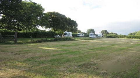Dog Friendly Campsites Near Lyme Regis