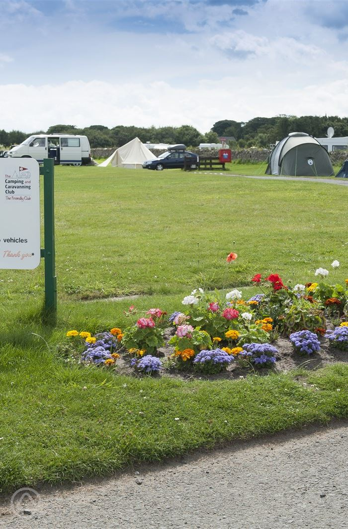 Bamburgh campsites | Best camping in Bamburgh, Northumberland