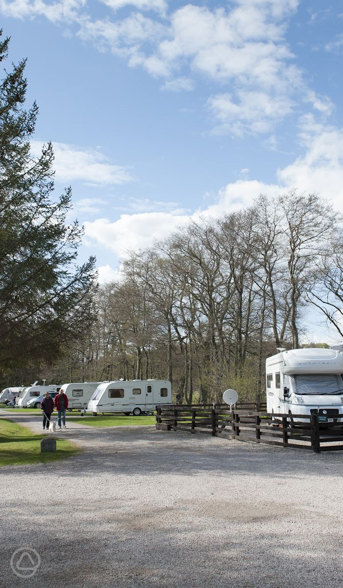 Dog Friendly Campsites Scotland