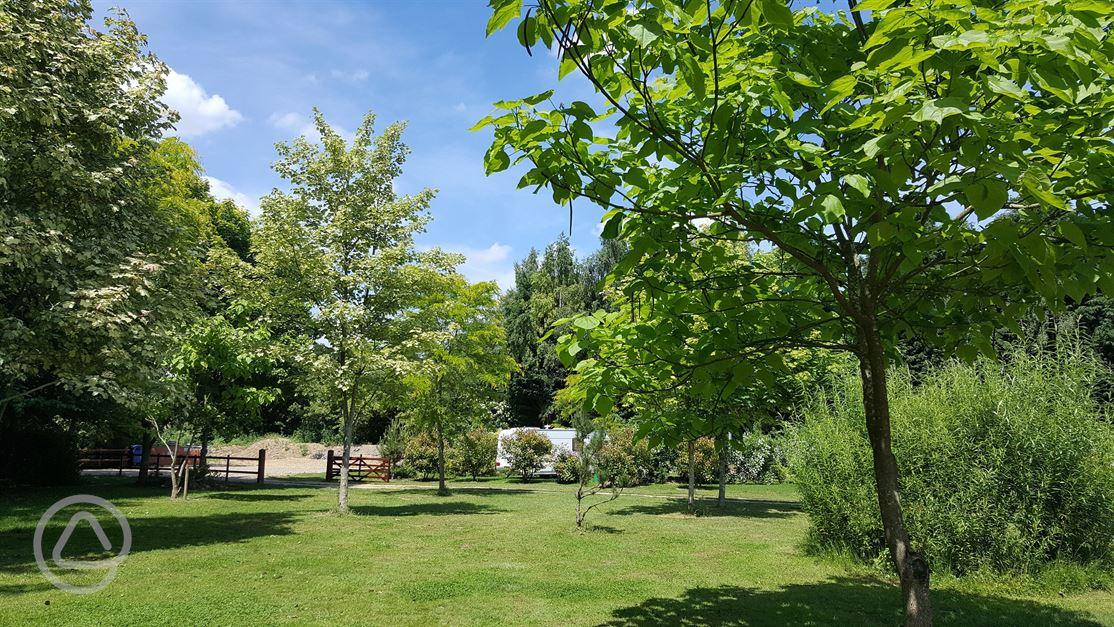 Secret Garden: The Secret Garden Touring Park In Wisbech, Cambridgeshire