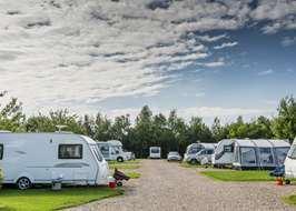 Sherwood Forest Camping >> Campsites Near Sherwood Forest