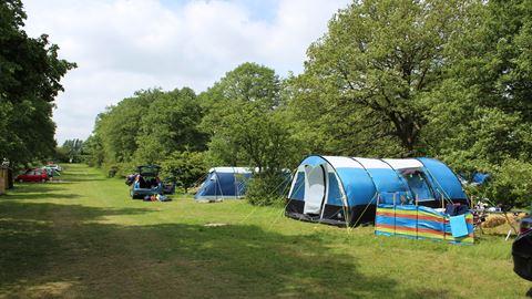 Aldenham Country Park in Elstree, Hertfordshire