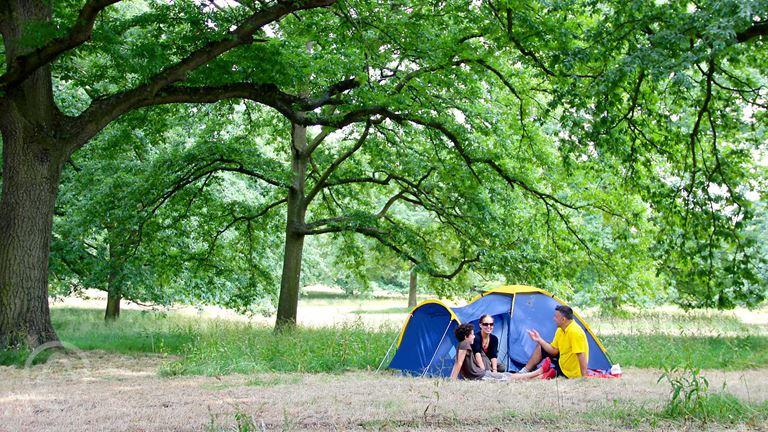 Aldenham Country Park in Elstree, Hertfordshire - book ...