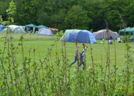 Campsites in east sussex with electric hook up