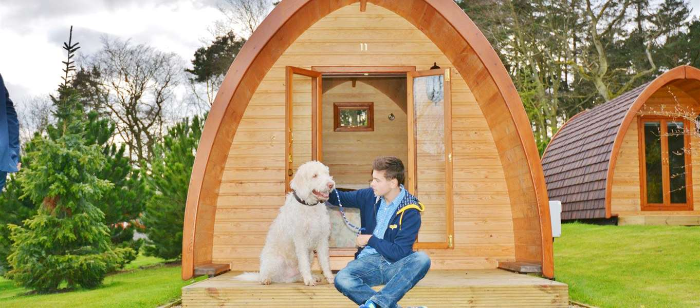 Dog Friendly Caravan Hire Cumbria