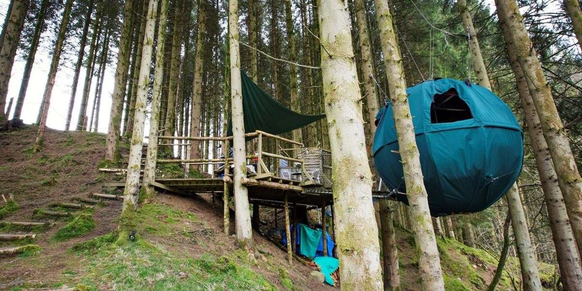 Tree Tent Holidays Quirky Tree Top Glamping Breaks In