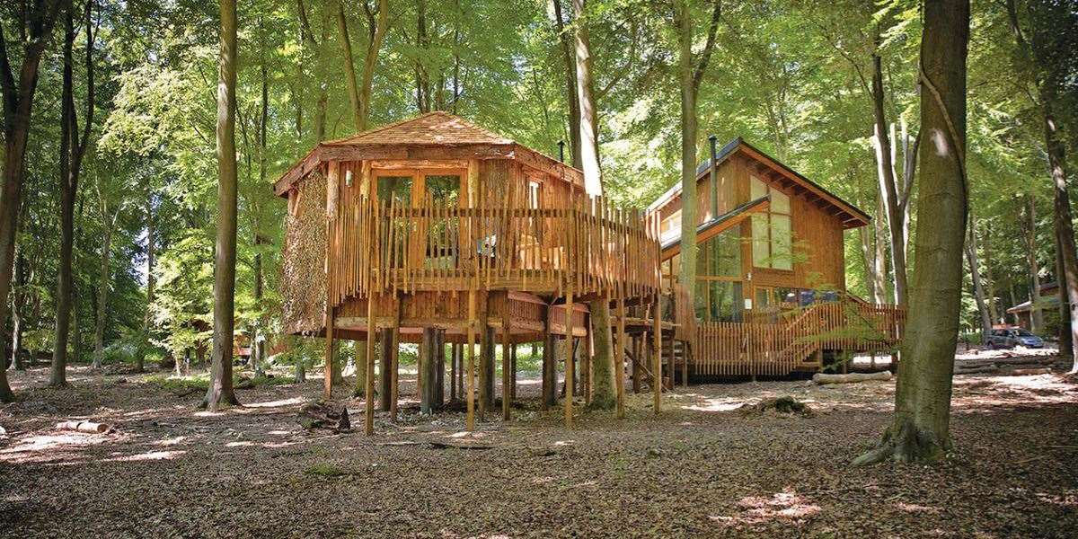 Treehouse Holidays In Norfolk Unique Glamping Treehouses